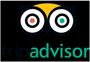 trip-advisor-clik-shuttle-waikiki